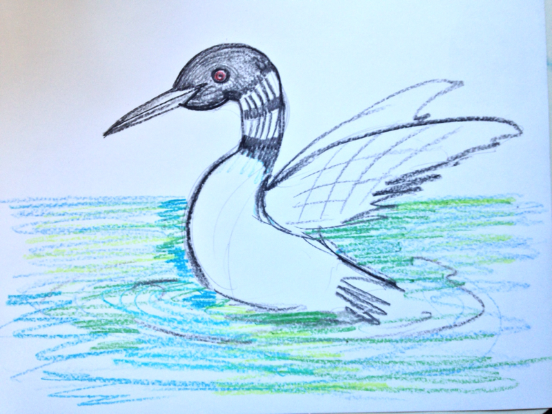 a loon drawing i made when my daughter and i were coloring grant