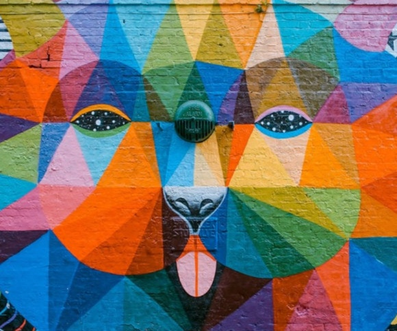 A photo of a wall with a mural of a colorful bear smiling